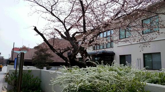 はな1・池田簡易裁判所.jpg