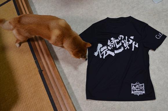 タイガース16・伝統の一戦Tシャツ.JPG