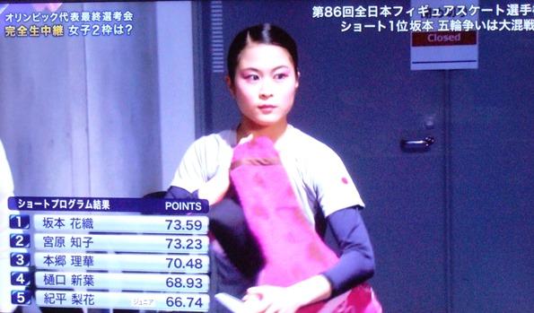 フィギュア1.JPG