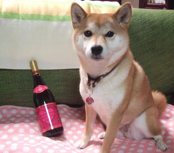 ワイン5・はな.JPG