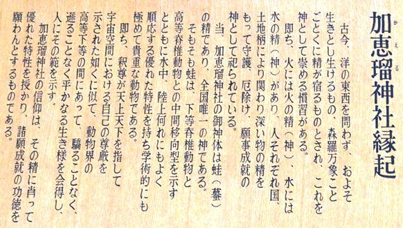 下呂72・かえる説明板.JPG