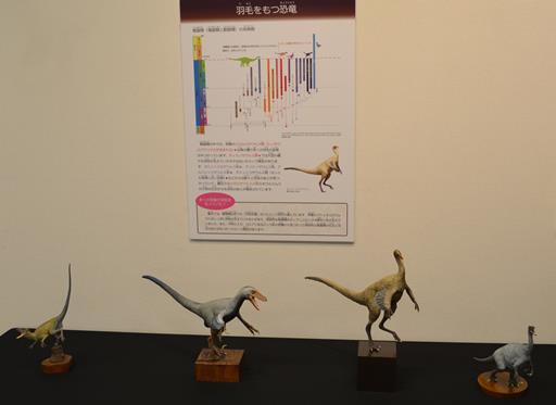 丹波竜8・羽毛をもつ恐竜.jpg