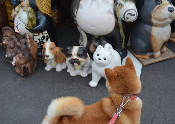 信楽14・犬.JPG