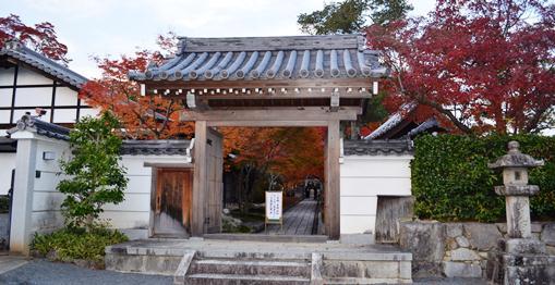 円成寺2山門.jpg