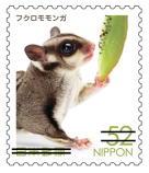動物522.jpg
