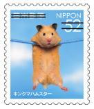 動物523.jpg