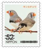 動物527.jpg
