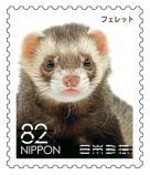動物824.jpg