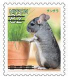 動物825.jpg