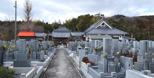 善福寺1・参道の墓地.jpg