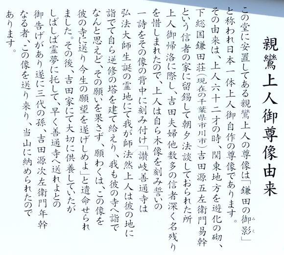 善通寺25・親鸞駒札.JPG