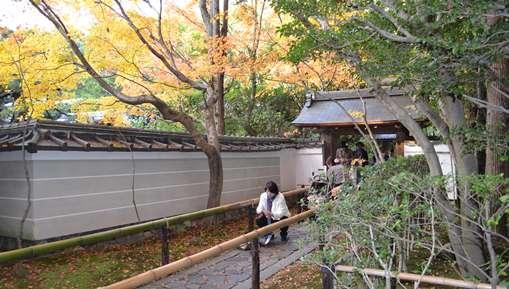 大徳15高桐院表門.jpg