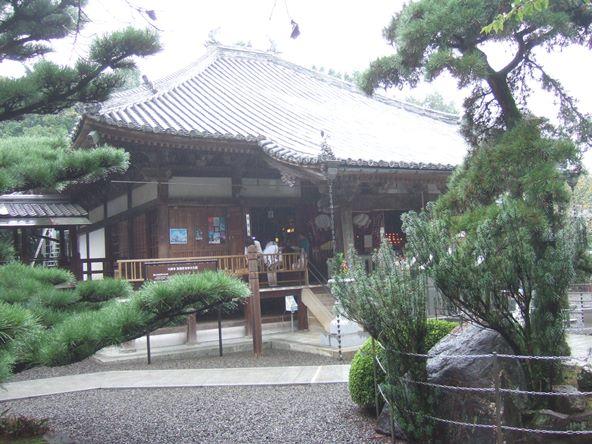大興寺24・三鈷の松.JPG