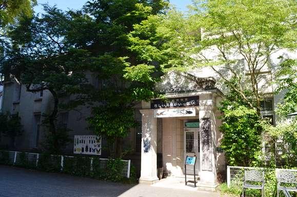 岐阜公園18・名和昆虫博物館.JPG