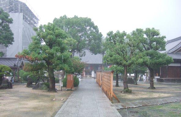本山寺5・境内、正面本堂.JPG