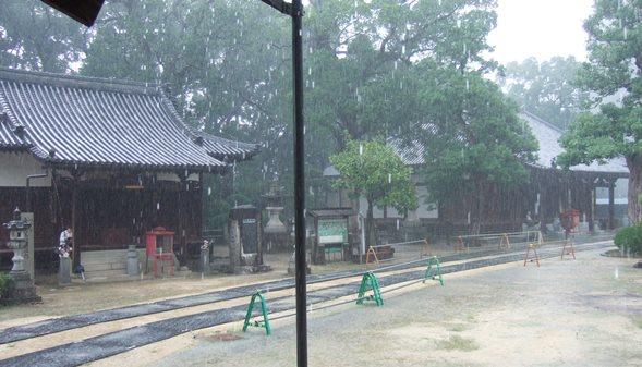 本山寺7・左側、阿弥陀堂、十王堂.JPG