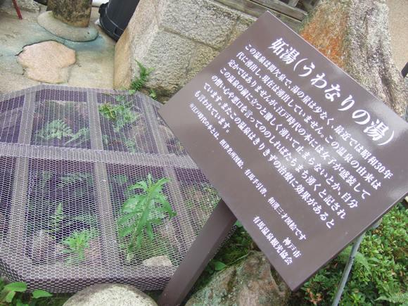 泉源8・妬.JPG