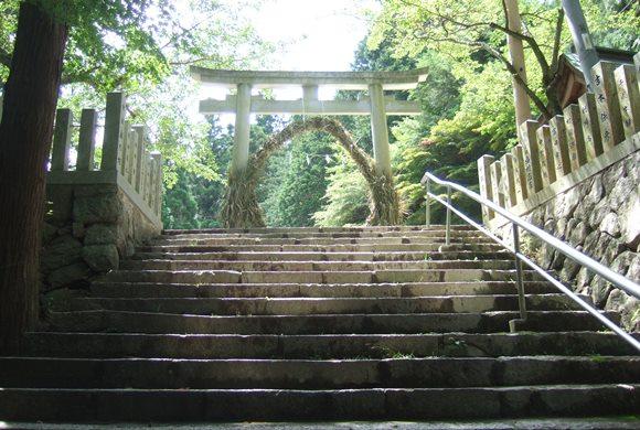 温泉神社4・参道.JPG