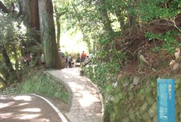 熊野154・継桜王子.jpg