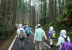 熊野15・舗装道.jpg