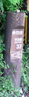 熊野171・37番.jpg