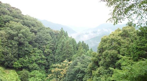 熊野37・遥か本宮を.jpg