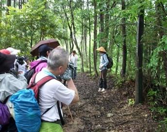 熊野43・白河上皇歌碑.jpg