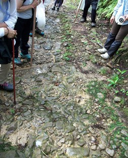 熊野50・江戸と昭和の石畳.jpg