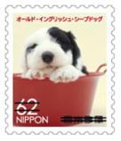 犬624.jpg