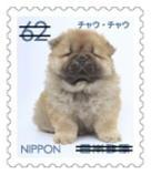 犬625.jpg
