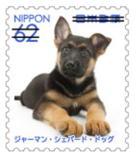 犬626.jpg