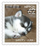 犬628.jpg