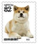 犬823.jpg