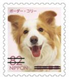 犬827.jpg