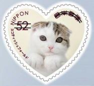 猫5201.jpg