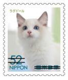 猫5205.jpg