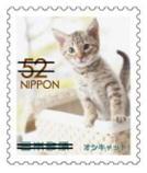 猫5206.jpg