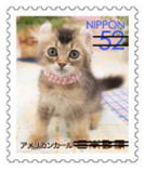 猫5210.jpg