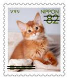 猫8207.jpg