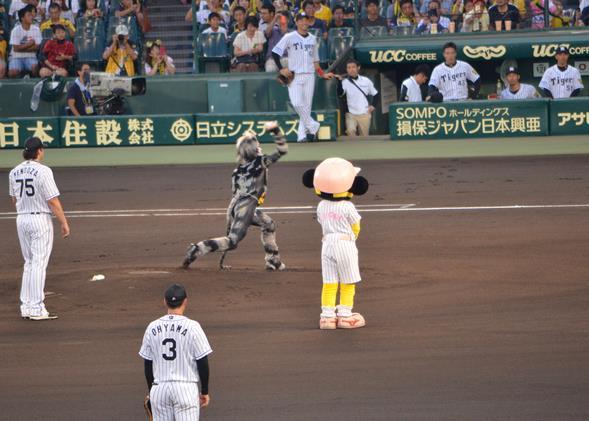 甲子園6.JPG