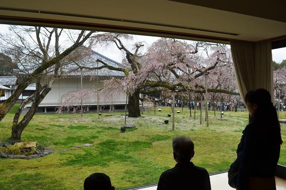 醍醐寺18・霊宝館から.JPG