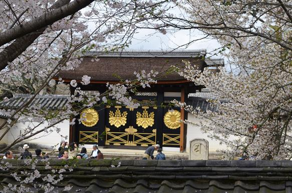 醍醐寺19・霊宝館から唐門.JPG