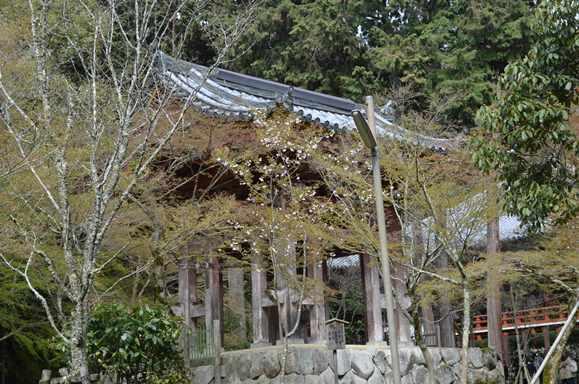 醍醐寺27・伽藍鐘楼堂.JPG
