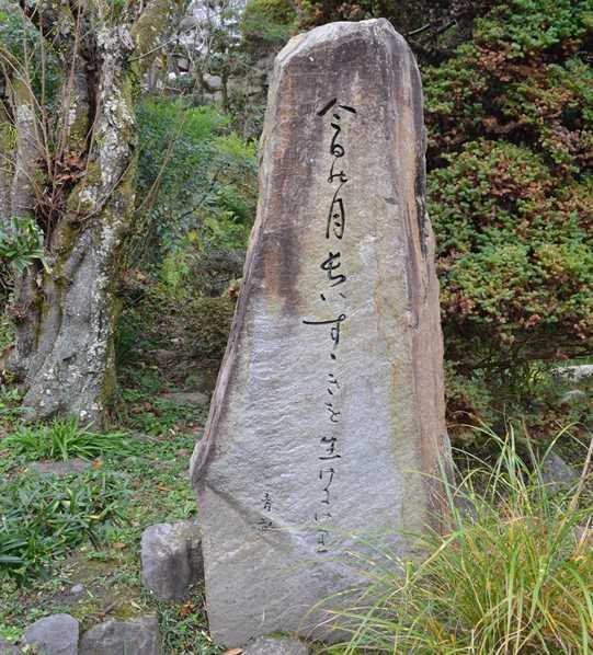長谷寺9・阿波野青畝の句碑.jpg