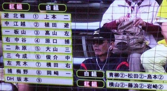 阪神1・紅白.JPG