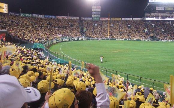 阪神6・黄色一色.jpg