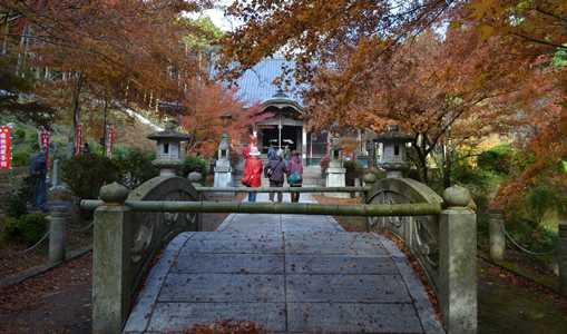 高山寺15・本堂前石橋.jpg