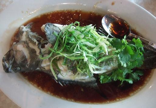 鯉魚門16石斑魚.jpg