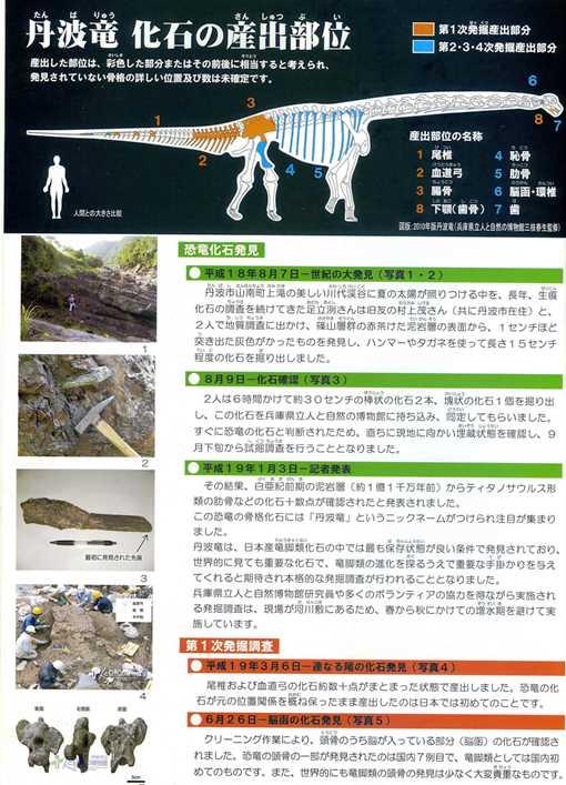 丹波竜16.jpg