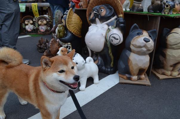 信楽9・犬.JPG
